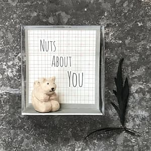 East of India Boxed squirrel-Nuts about you