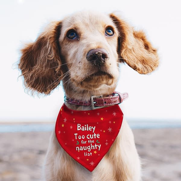 Personalised 'Too cute for the naughty list' Dog Bandana